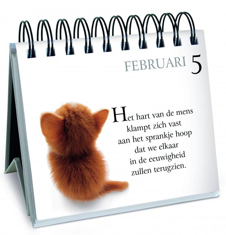Win een exemplaar van <br>'365 Dagen met mijn bazige kat'